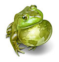 Global conservation and environmental protection symbol as a green frog and an inflated throat with the world map as a birth mark Royalty Free Stock Photos