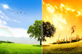 Global warming and pollution concept effects on environment city that have tree for example Stock Photos