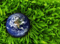 Globe fresh green grass elements image furnished nasa Stock Images