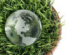 Globe in the Grass Royalty Free Stock Photography