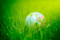 Globe on grass earth day environment concept closeup photo of a Royalty Free Stock Images