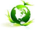 Globe on organic leaves background Stock Images