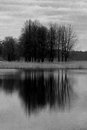 Gloom lake a at autumn Stock Image