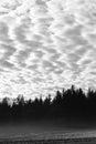 Gloom landscape Royalty Free Stock Photo
