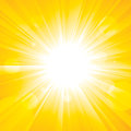 Glorious Sun Royalty Free Stock Photo
