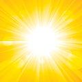 Glorious Sun Royalty Free Stock Image