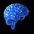 Glossy blue brain d rendered illustration Royalty Free Stock Image