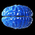 Glossy blue brain d rendered illustration Royalty Free Stock Photos