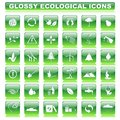 Glossy ecological button vector illustration of complete set of Stock Photos