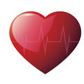 Glossy heart cardiogramme red with cardiogram on white background Stock Images