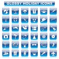 Glossy Holiday Button Royalty Free Stock Photo