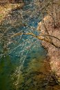 Glover`s Trout Stream in Echo Valley Park Royalty Free Stock Photo