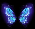 Glowing butterfly wings Royalty Free Stock Photography