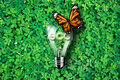 Glowing eco text in light bulb being on green grass background and monarch butterfly , concept idea, illustration Royalty Free Stock Photo