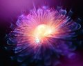 Glowing fractal background flower Royalty Free Stock Photo