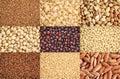 Gluten free grains collection nine healthy black quinoa two varieties of brown rice millet amaranth teff buckwheat sorghum kaniwa Royalty Free Stock Image