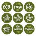 Gluten, lactose, sugar, Gmo free, bio, eco, fresh calligraphic handwriting lettering with leaf, cube, drop. Vector white vintage