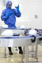Gm engineer showing xxl size eggs at production line gmo fully protected in blue uniform Stock Photography