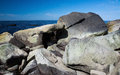 Gneiss rocks closeup Royalty Free Stock Photo