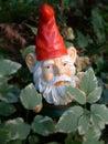 Gnome de jardin dans la forêt Image libre de droits