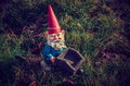 Gnome task garden on grass with a wheelbarrow Stock Images