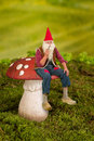 Gnome on toadstool real life garden sitting a Royalty Free Stock Images