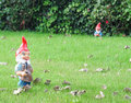 Gnomes do jardim Fotografia de Stock Royalty Free
