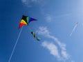 Go Fly A Kite! Royalty Free Stock Photo