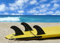 Go Surf Stock Photo