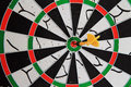 Go to goal dart be stick in the middle of the dartboard look like direct consequence is gushing victory Stock Photos