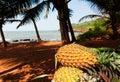 Goa pineapples Royalty Free Stock Photo