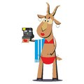 Goat in bathing suit making selfie cartoon on photo camera isolated on white background vector illustration Stock Photography