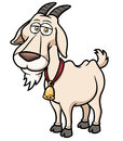 Goat cartoon vector illustration of Royalty Free Stock Photography