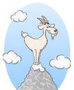 Goat standing on a mountain peak Royalty Free Stock Photo