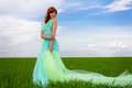 The goddess of the field the girl spring summer image union with nature grass warmth lightness beauty Royalty Free Stock Photos