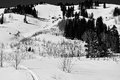 Going back up for lap black and white image of country skiing Stock Photos