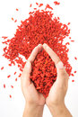 Goji Berry Benefits: Antioxidant & Anti-Inflammatory Superfruit, Even though goji berries date back to the early days of Chinese m Royalty Free Stock Photo