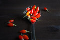 Goji berrys traditional chinese medicine berry Royalty Free Stock Photo