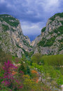 Gola del furlo the famous gorge marches italy Royalty Free Stock Images