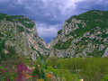 Gola del furlo the famous gorge marches italy Royalty Free Stock Image