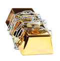 Gold bar protected with chain and padlock Royalty Free Stock Photos