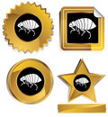 Gold and Black - Flea Royalty Free Stock Photo