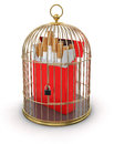 Gold cage with cigarette pack clipping path included image Stock Images