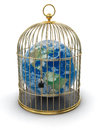 Gold cage with globe clipping path included image Stock Photography