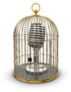 Gold cage with microphone clipping path included image Royalty Free Stock Photo