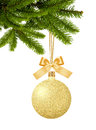 Gold Christmas ball with bow on ribbon on green new year tree is Royalty Free Stock Photo