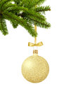 Gold Christmas ball with bow on ribbon on green tree branch isol Royalty Free Stock Photo