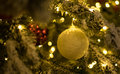 Gold christmas balls with christmas tree Royalty Free Stock Photo
