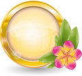 Gold circle frame with pink frangipani flower Stock Photography