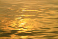 Gold color ripple on the surface of the water Royalty Free Stock Photos